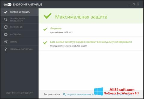 Skærmbillede ESET Endpoint Antivirus Windows 8.1