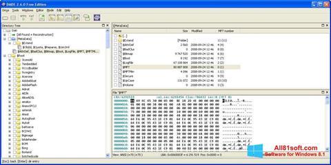 Skærmbillede DMDE Windows 8.1