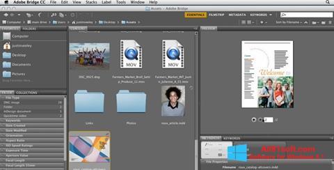 Skærmbillede Adobe Bridge Windows 8.1