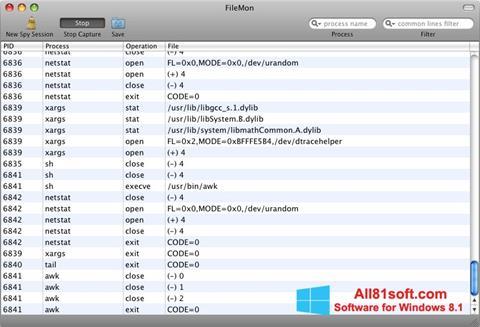 Skærmbillede FileMon Windows 8.1