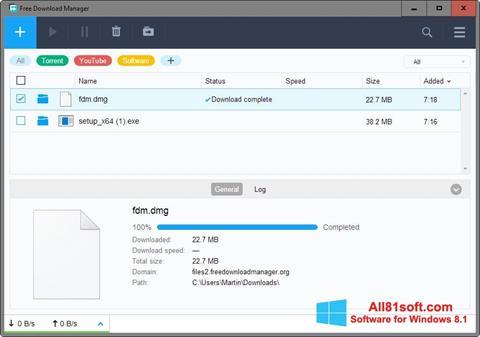 Skærmbillede Free Download Manager Windows 8.1