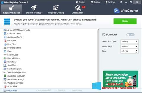 Skærmbillede Wise Registry Cleaner Windows 8.1