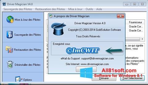 Skærmbillede Driver Magician Windows 8.1