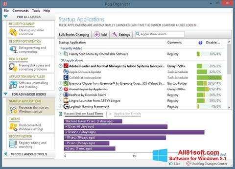 Skærmbillede Reg Organizer Windows 8.1
