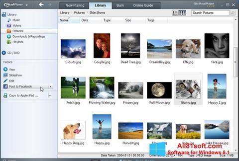 Skærmbillede RealPlayer Windows 8.1